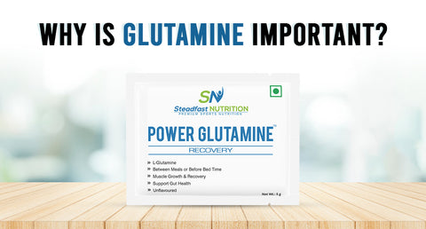WHY IS GLUTAMINE IMPORTANT?