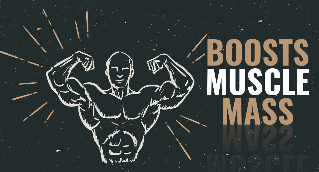Boosts Muscle