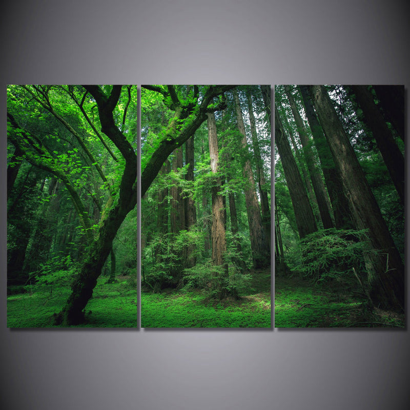 Lush Green Forest - inspiring framed canvas wall art - vegan