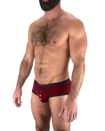 Insignia Brief