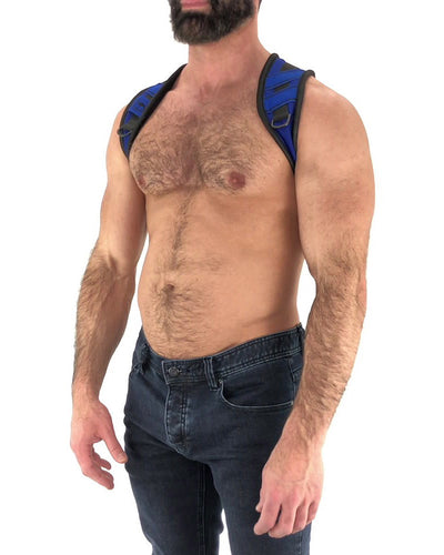 Access Harness