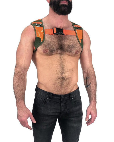 Backup Harness
