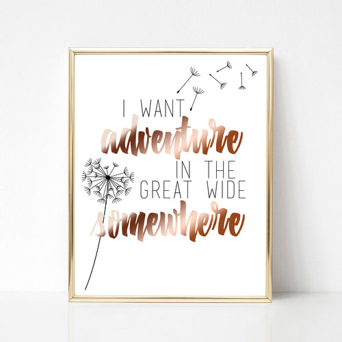 Adventure in the Great Wide Somewhere Print - Spiffing