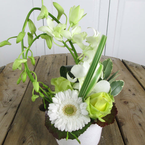 Burlington Florist - White Whisper - European Arrangements - EuroStyle Flower Market