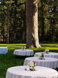 Wedding Package for 100 guests