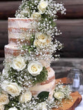 Rustic Cake display