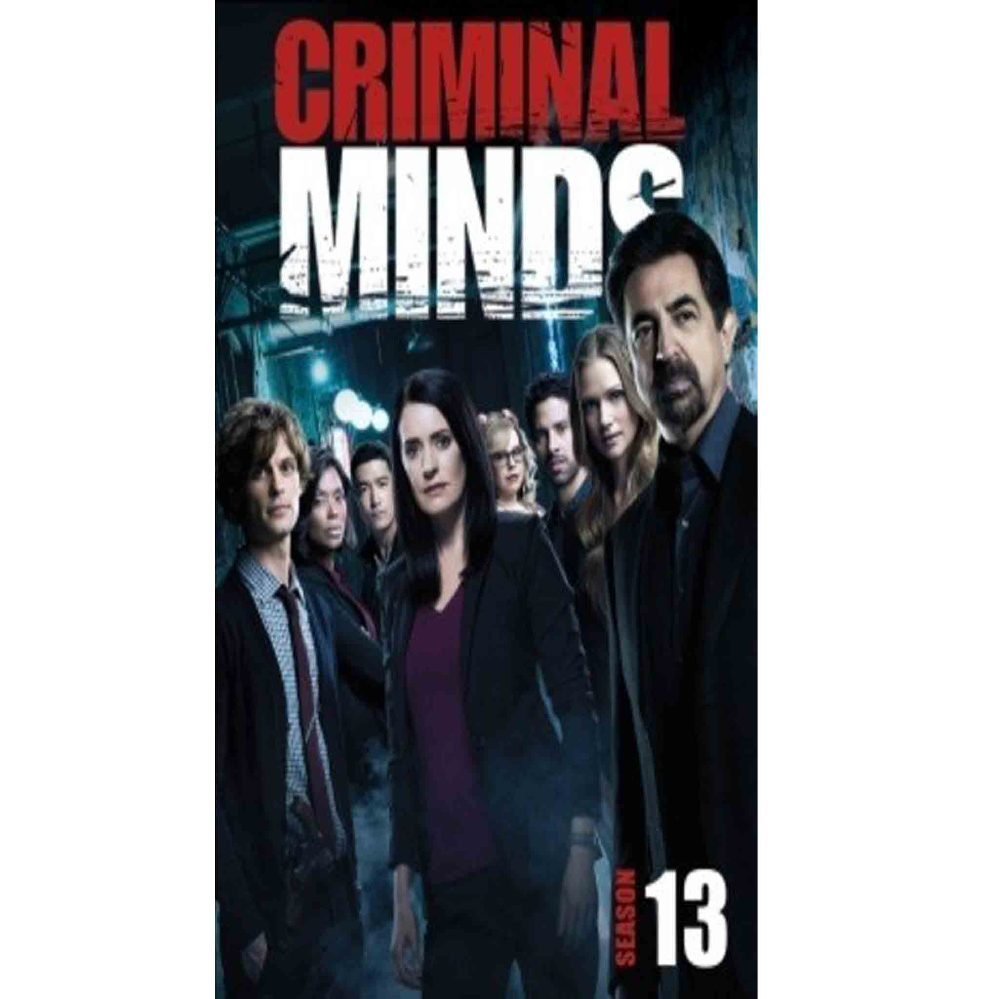 Criminal Minds Season 13 (DVD) - DVDsHQ