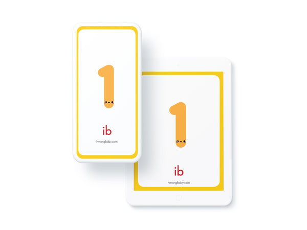 Digital Number Flashcards