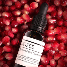Ageless Facial Treatment Essence - JOSÉE Organic Beauty & Perfume