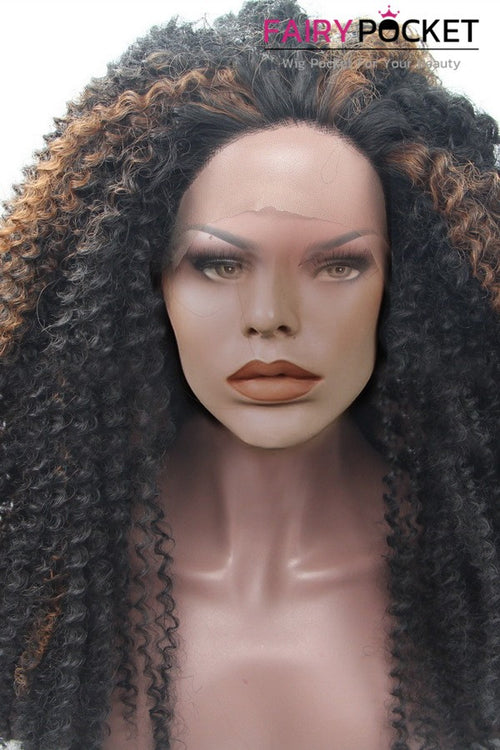 Nature Black and Brown Highlights Long Curly Lace Front Wig