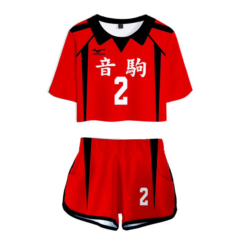 Haikyuu!! Anime Suits - I