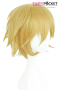 Miraculous Ladybug Adrien Agreste Cosplay Wig