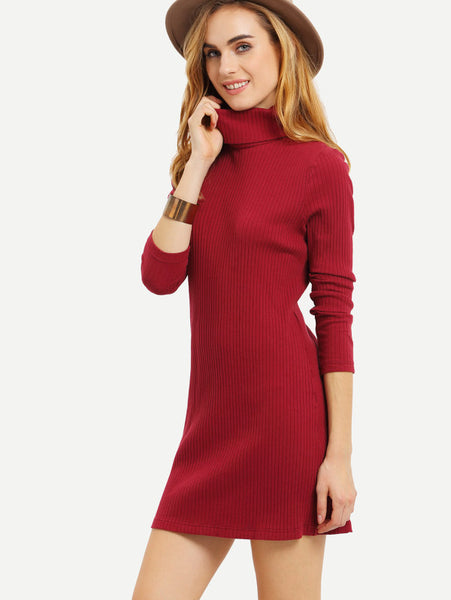 High Neck Ribbed Dress