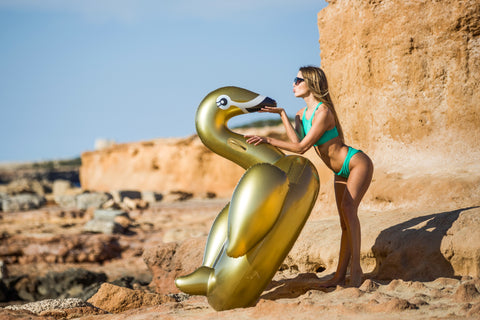The golden swan standing on the rocks next to the sea with a model