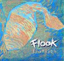Flook - Flatfish - CD