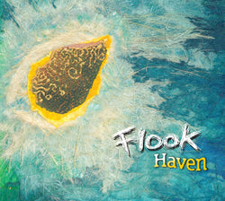 Fluke - Haven - CD