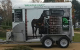 Equine Salt Therapy Winter / Spring Specials