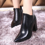 Womens Pointy Tip Casual Heel Boots