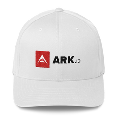 ARK.io Flexfit 6277 grey and wht