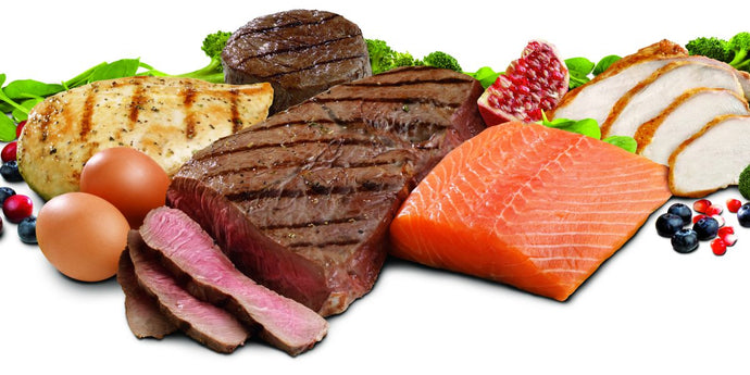 What To Consider When Deciding Upon Your Protein Intake