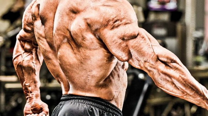 Pssst, A Number Of Myths Associated With Anabolic Steroids Are Being Discussed Here!