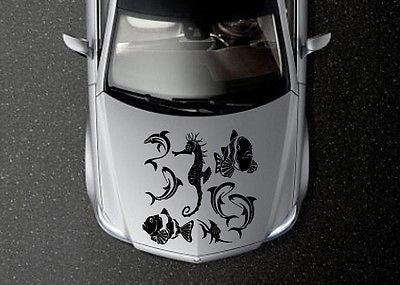 CAR HOOD VINYL DECAL ART STICKER GRAPHICS CUTE FISHES OS646