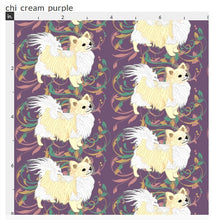 Chihuahua - Purple with Cream Long Coat