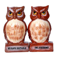 Irritable Owls Syndrome Ceramic Magnetic Salt and Pepper Shaker Set