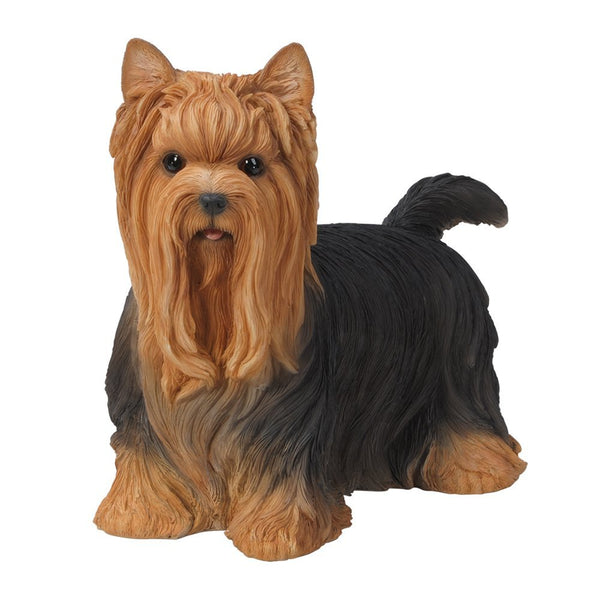Realistic Life Size Yorkshire Terrier Yorkie Statue Detailed Sculpture Glass Eyes Hand Painted Resin 12 inch Figurine Home Decor Amazing Likeness