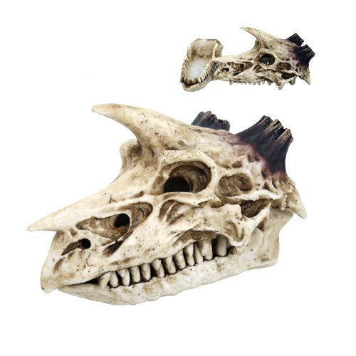 Dragon Skull Incense Box Collectible Figurine