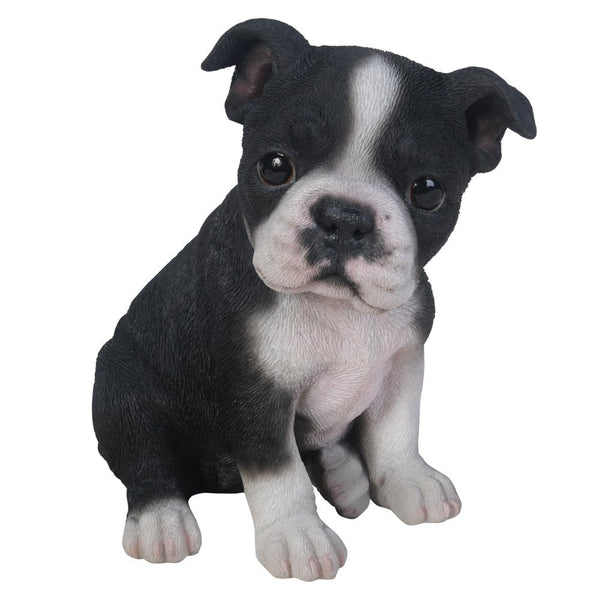 Pacific Giftware Adorable Seated Boston Terrier Puppy Collectible Figurine Amazing Dog Likeness Hand Painted Resin 6.5 inch Figurine Great for Dog Lovers Tabletop Decor