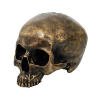 Brush Gold Cool Skull Collectible Figurine