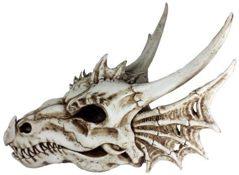 Pacific Giftware Ancient Jurassic Fossil Dinosaurs Agujaceratops Dragon Large Skull Head with Wing