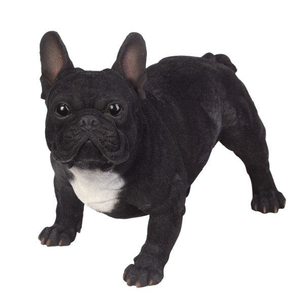 PACIFIC GIFTWARE Realistic Large Size Statue Black and White French Bulldog Animal Dog Decorative Resin Figurine