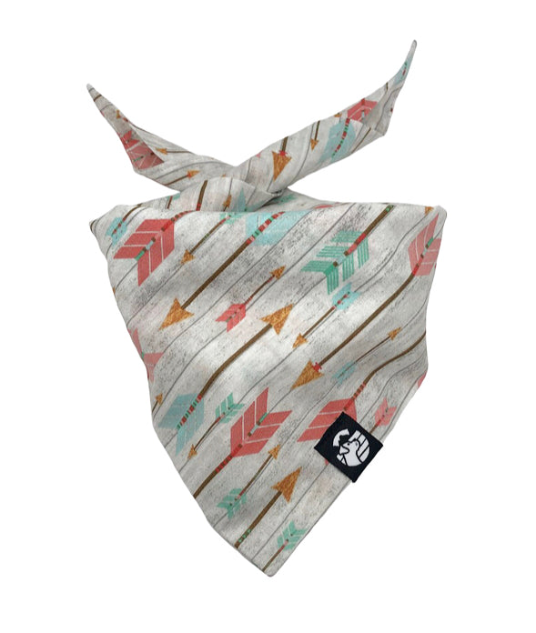 Pastel Arrow Bandana