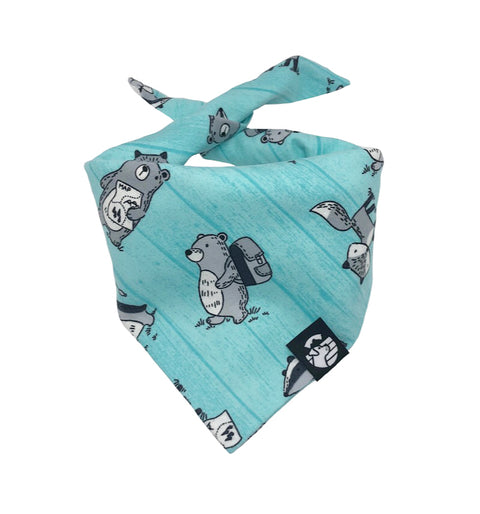 Adventure Bear Bandana (Snuggle Fabric)