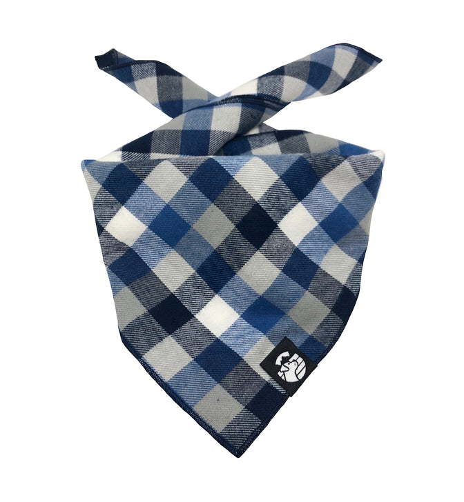 Blue & Grey Checkered Bandana