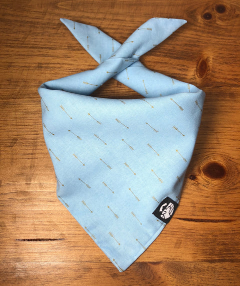 Baby Blue Arrowed Bandana
