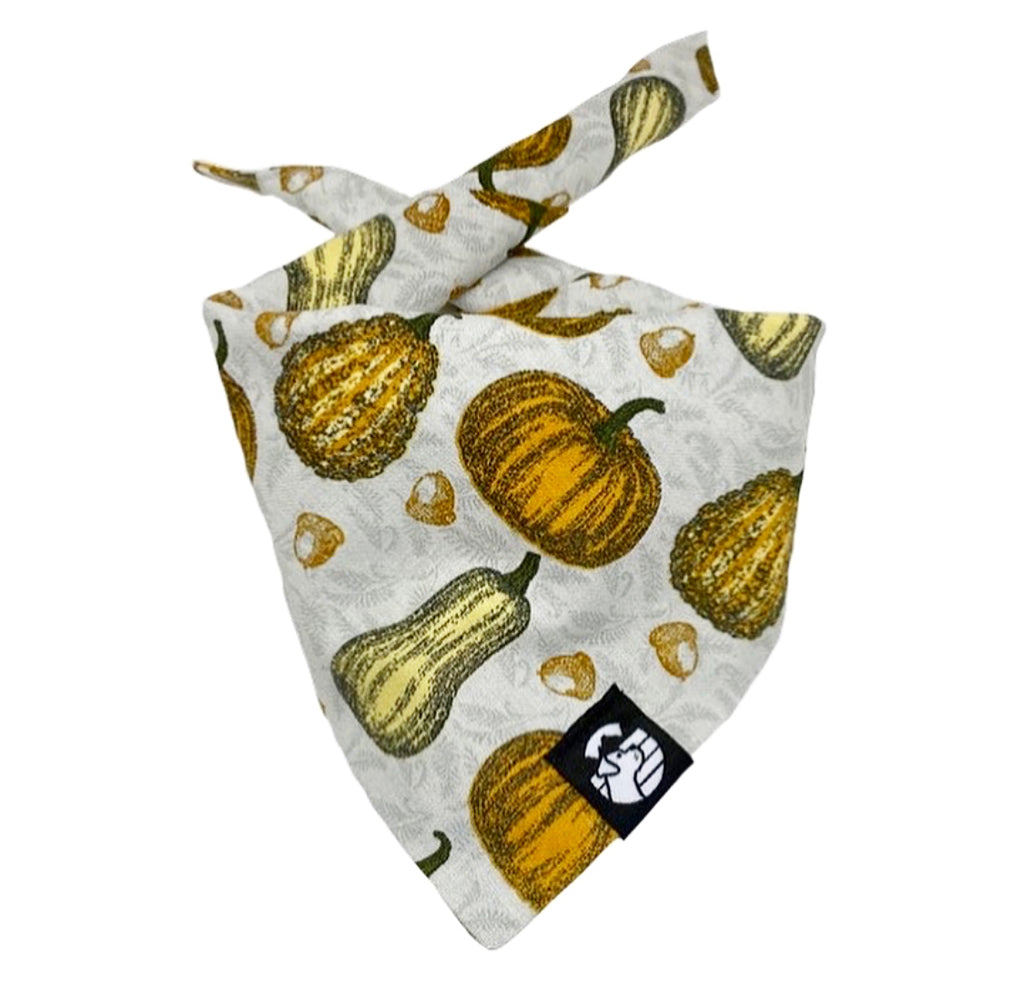 Fall Pumpkin Bandana