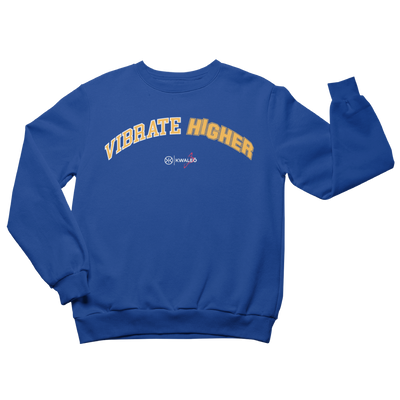 Vibrate higher blue sweatshirt