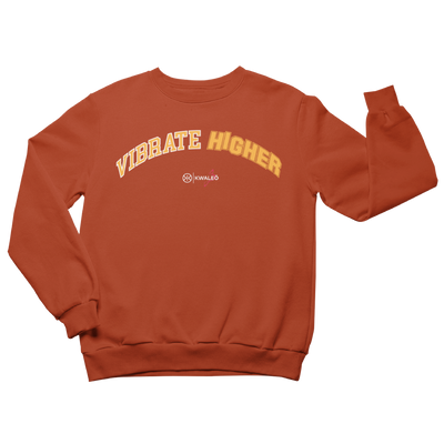 Vibrate higher orange sweatshirt