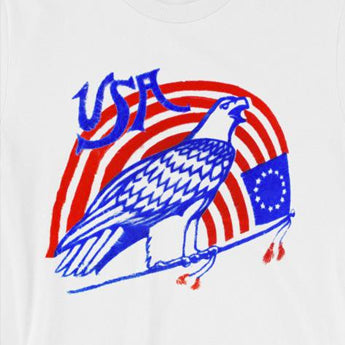 USA Eagle & Flag Fourth of July Tee, 4th of July Unisex Tee