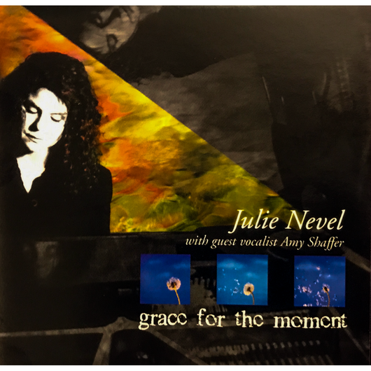 Grace For The Moment - Julie Nevel