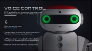 DOBI, A Voice Controlled Entertainment Robot