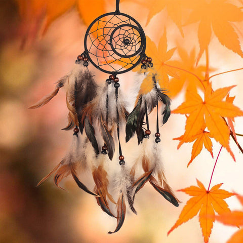 Black & Brown Feathers Hand made Dream Catcher
