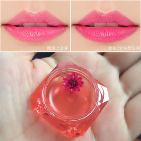 Full Lips Frozen Jelly Lipstick Makeup Set