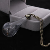 The built Natural Dandelion Seed Plant Necklaces