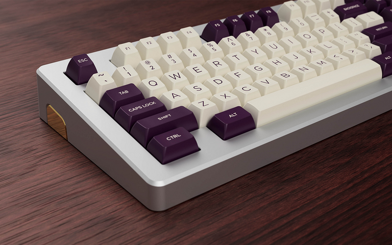 [In Stock] SP SA VoC Violet on Cream-zFrontier