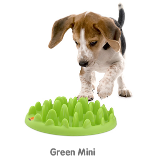 Green Slow Dog Feeder, Dog food bowl, Co. Of Animals - Need Not Lift A Paw Limited