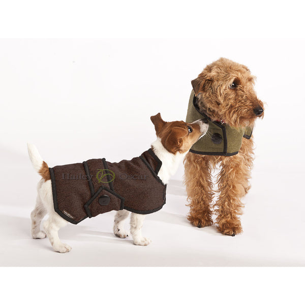 Hailey & Oscar Wool Blazer Coat, Dog coat, Hailey & Oscar, Need Not Lift A Paw Limited